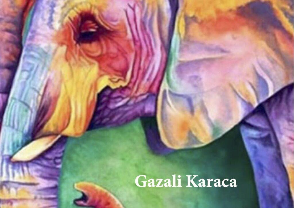 Sedcard Gazali Karaca